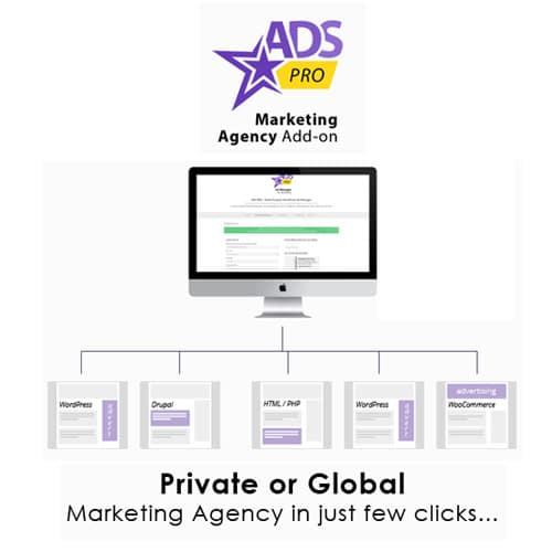 Ads Pro Add on WordPress Marketing Agency