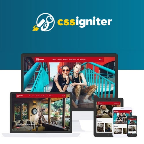 CSS Igniter Pinmaister Pinterest Like WordPress Theme