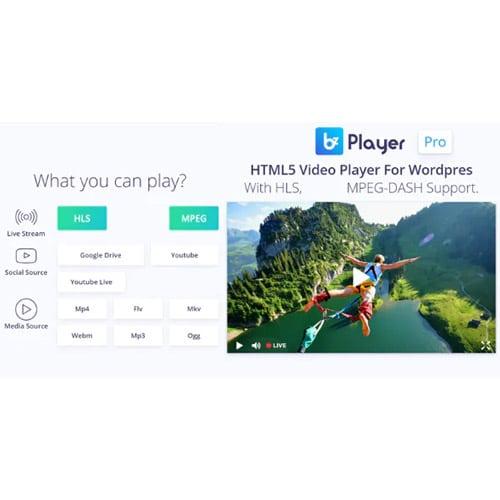 bzplayer Pro Live Streaming Player WordPress Plugin